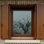 Finestre in legno con oscuro in PVC
